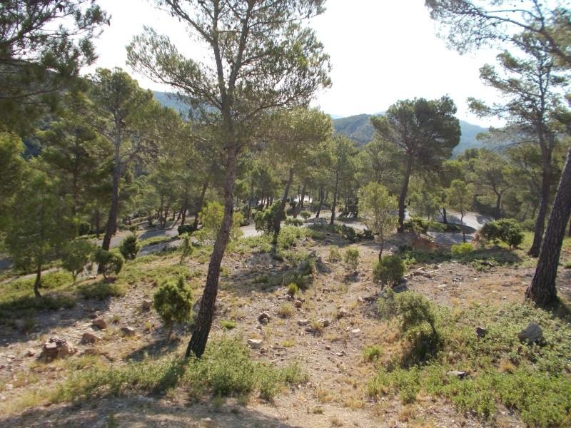 2eme partie:Sierra Espugna Dscn0610