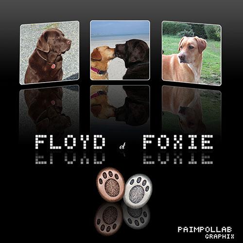 Nouvelles de Foxie (Rescue) 513f10