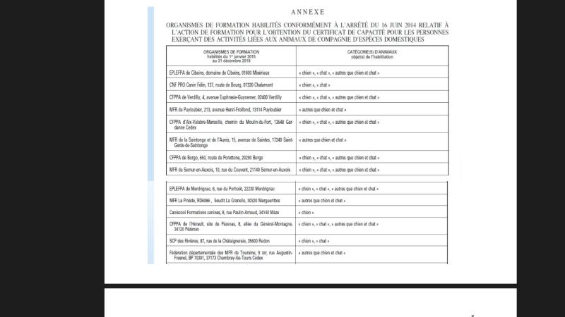 Certificat de capacité  - Page 2 P110