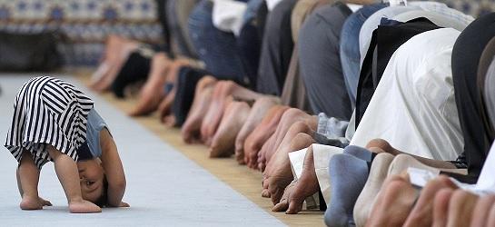 Enquête sur le Coran, bilan inquiétant  Morveu10