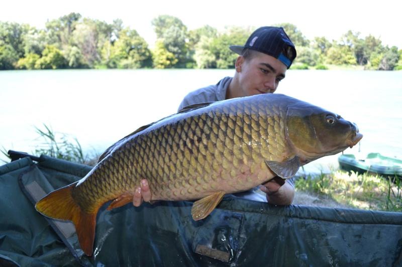 Mes plus beaux poissons de cette année 11874410