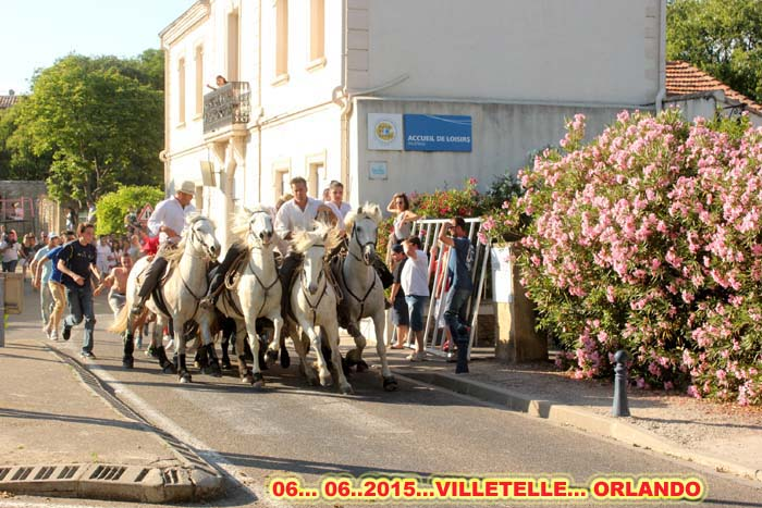 Toros  Piscine &  Bandide...  VILLETELLE  06..06..2015 Img_0021