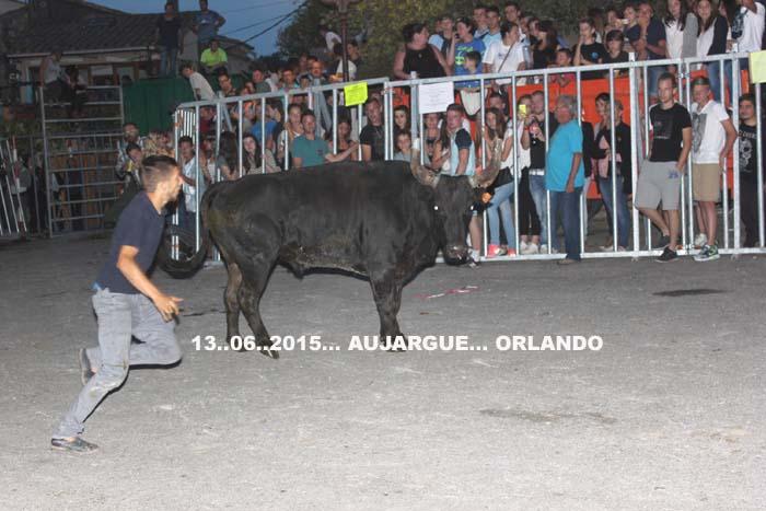 13...06..2015...Montpezat manade du levant & Aujargue Manade Vidal Img_0025