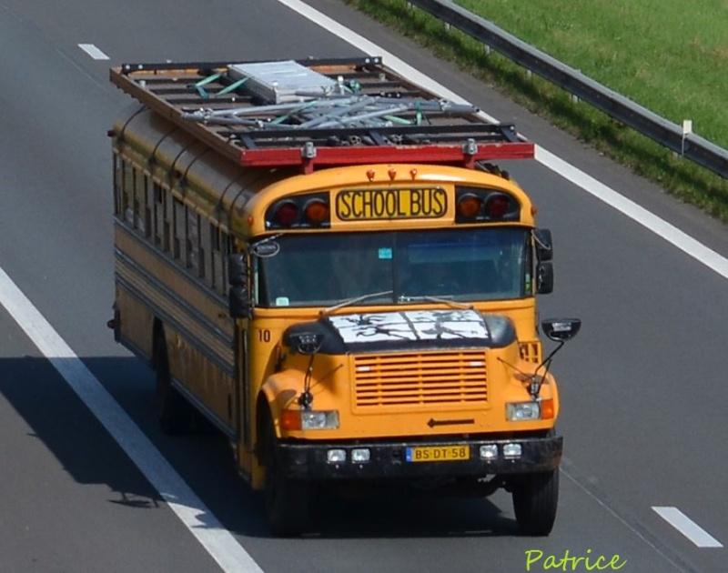 Scool Bus  169pp12