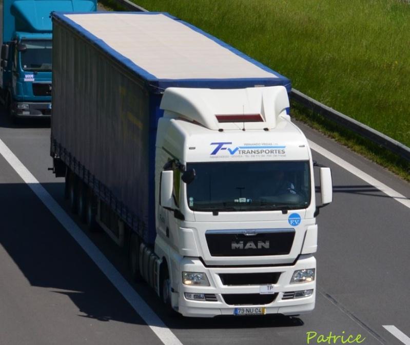 FV Transportes (Fernando Viegas) (Ribamondego Gouveia) 180pp10