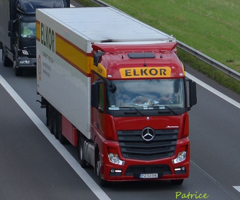 Elkor (Kleszczewo) 223pp11