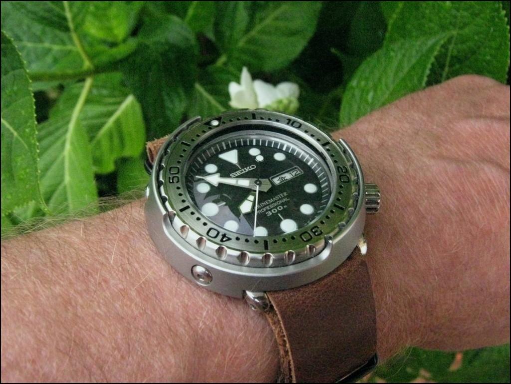 La montre du vendredi, le TGIF watch! - Page 7 Rtimg_19