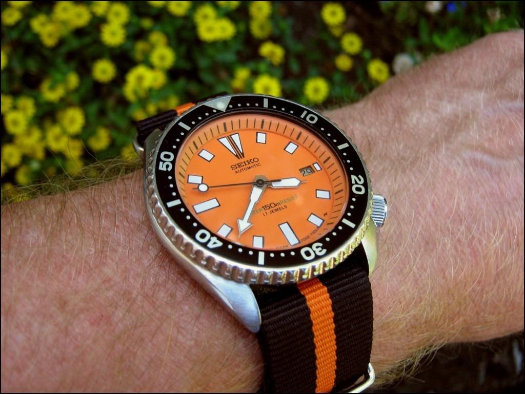 Votre montre du jour - Page 31 Rtimg_48