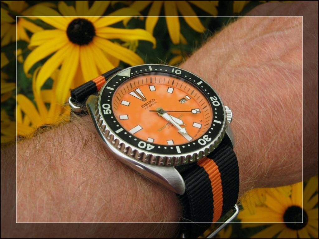 Votre montre du jour - Page 2 Rtimg_64