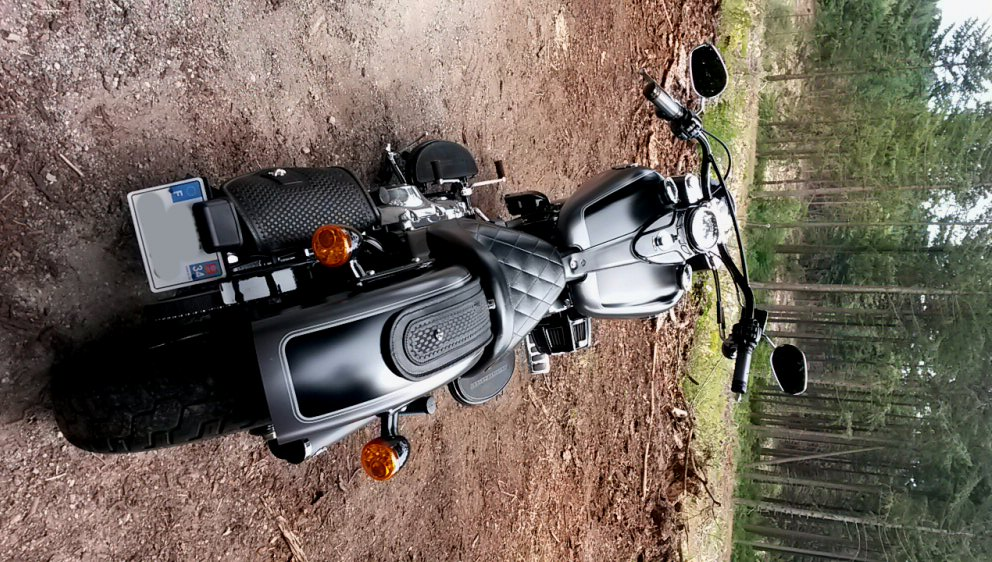 Softail Slim sous tous ses angles ! - Page 9 Rd110