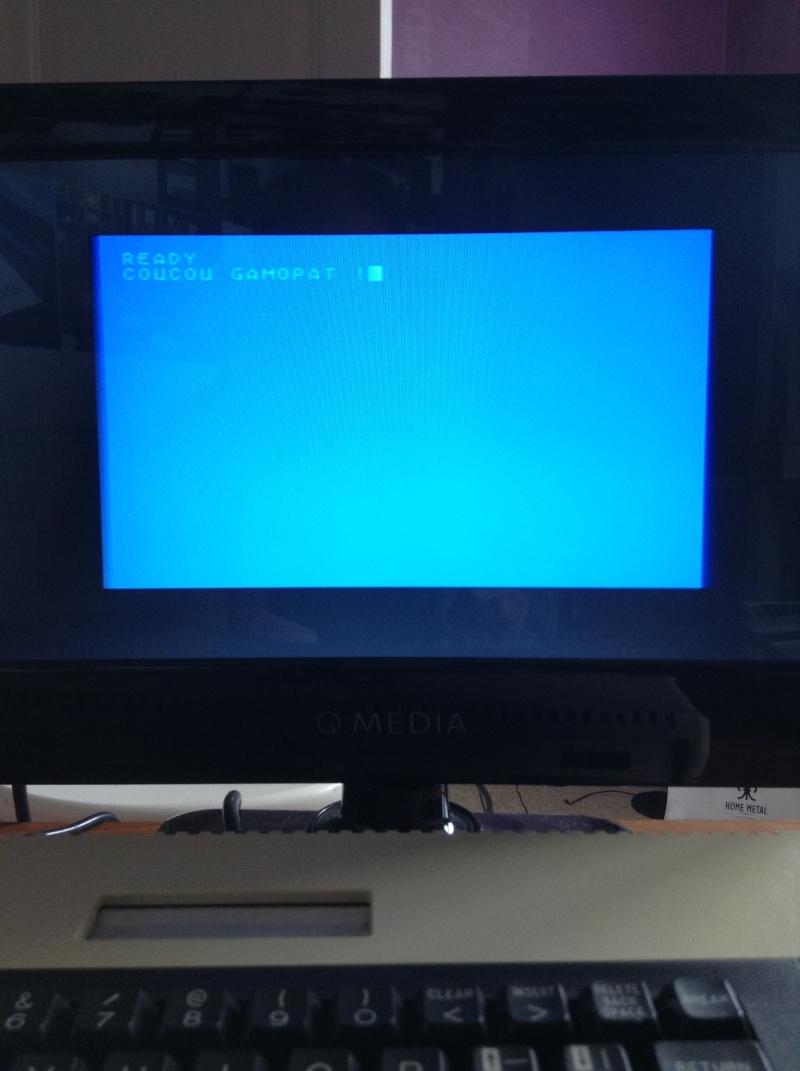 Quel micro rétro se connecte facilement en Peritel sur une TV LCD ? 2015-012
