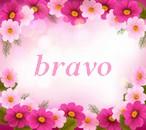 Petites bricoles d'Enisol Bravo210