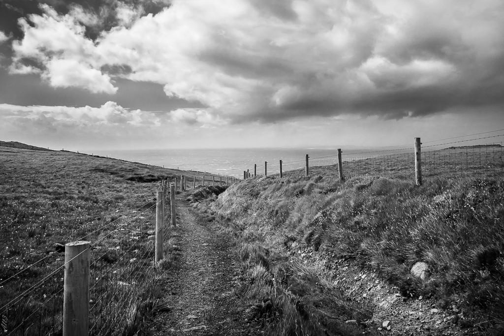 Trail, walk, ride ... Moher511