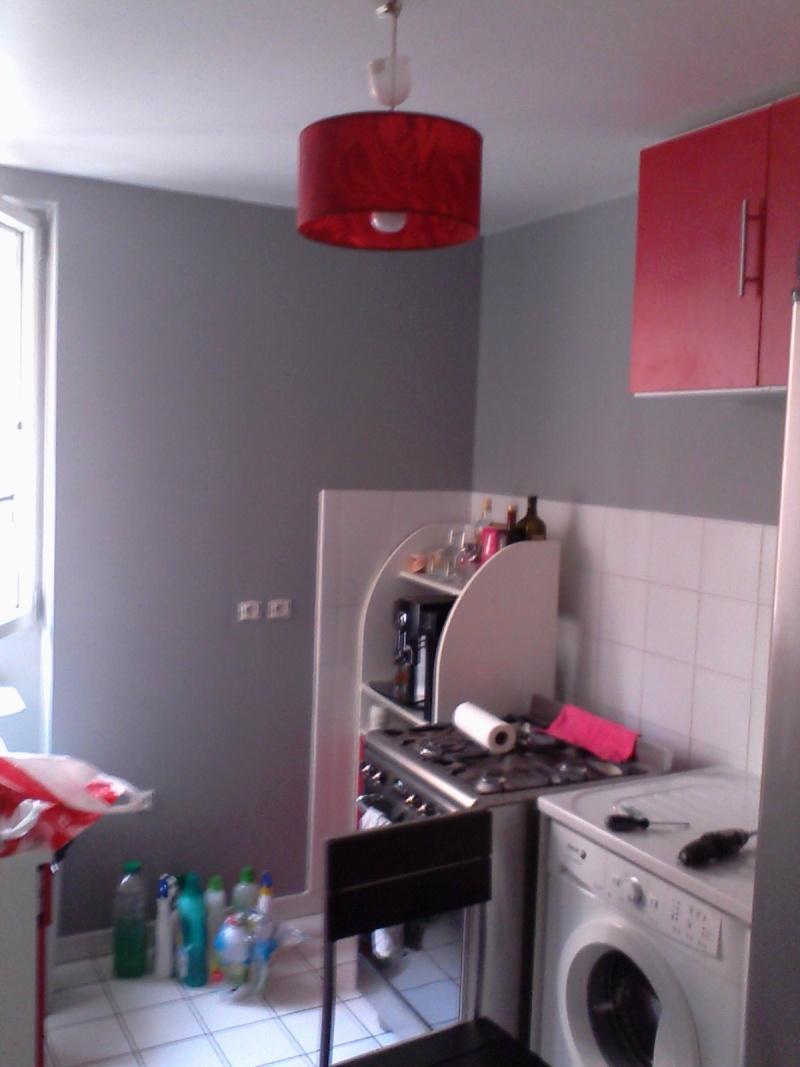 Décoration salon/salle manger. Img_2011