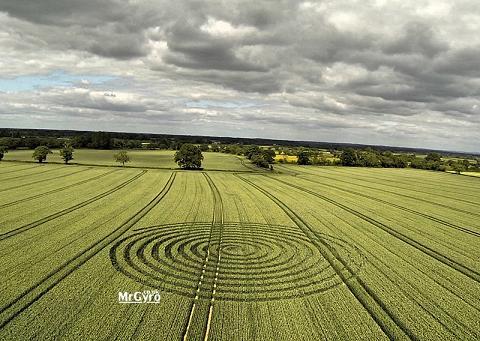 Crop circle 9 Juin 2015 + video idem dans ciel Norvège en 2012 Crop_c10