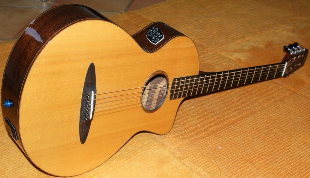 Schertler : des guitares aussi ! 11010