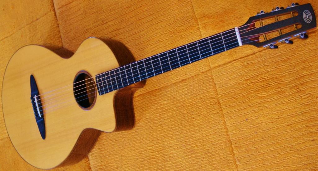 Schertler : des guitares aussi ! 111_210