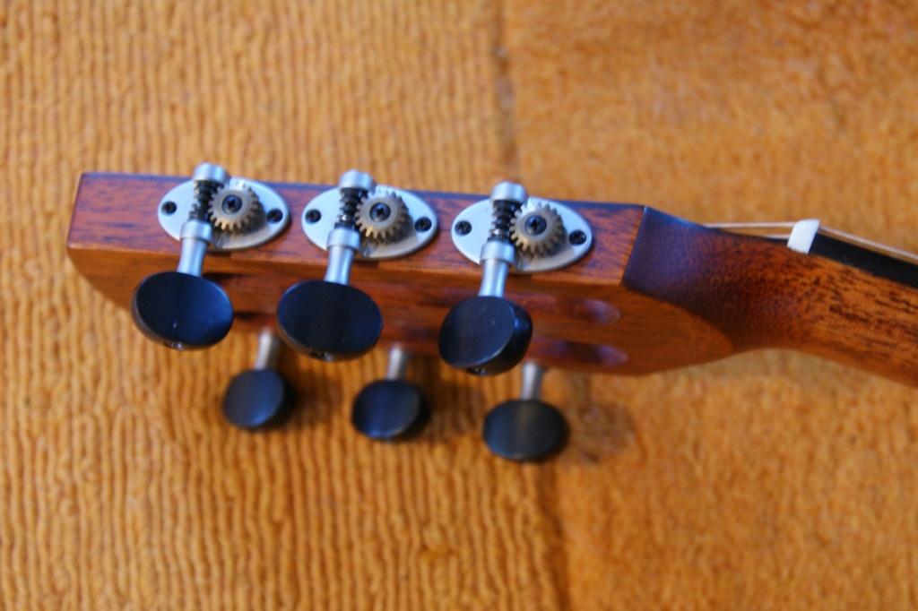 Schertler : des guitares aussi ! 44411