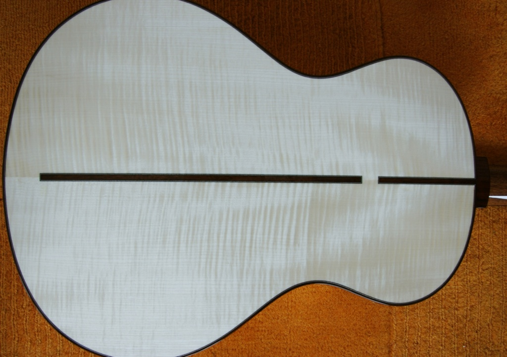 Blind guitars Dsc03010