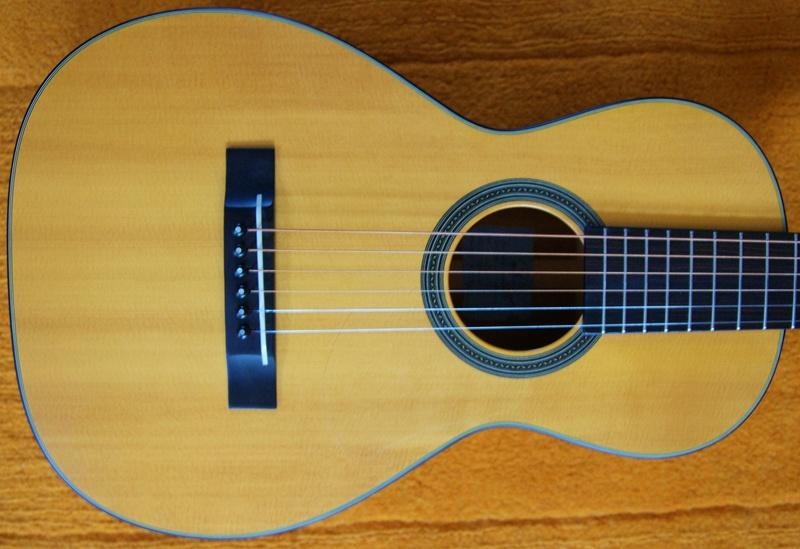 Nouvelle guitare - Page 3 Y310