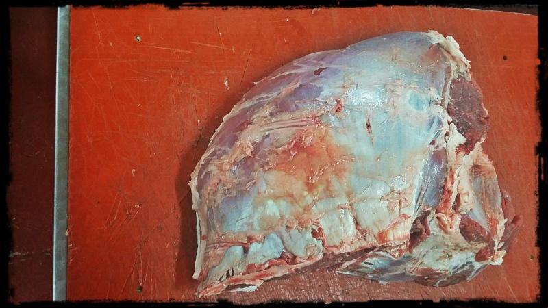 El filete de brazuelo Filete12