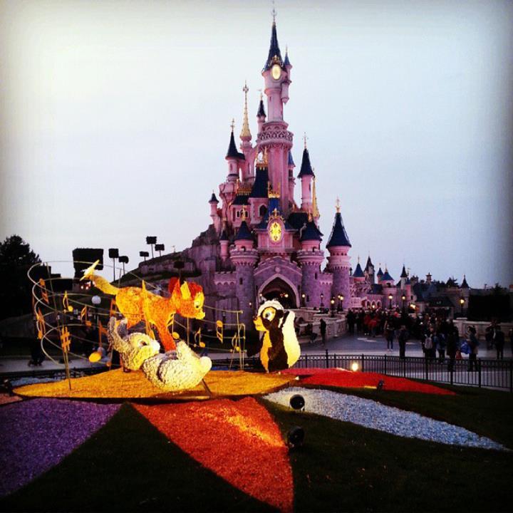Instagram OFFICIEL Disneyland Forum Club 11130710