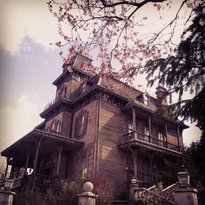 Instagram OFFICIEL Disneyland Forum Club 11301310