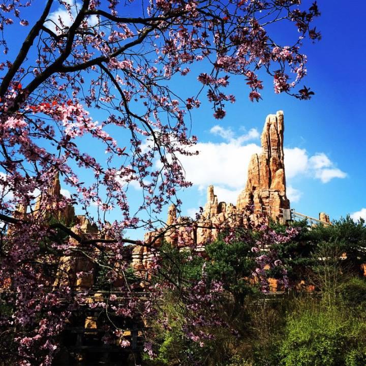 Instagram OFFICIEL Disneyland Forum Club 11537110