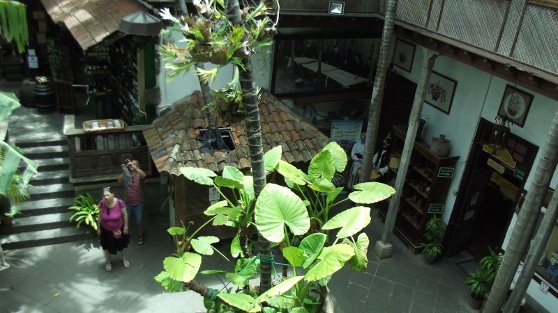 Casa de Los Balcones, Tenerife Dscf3832