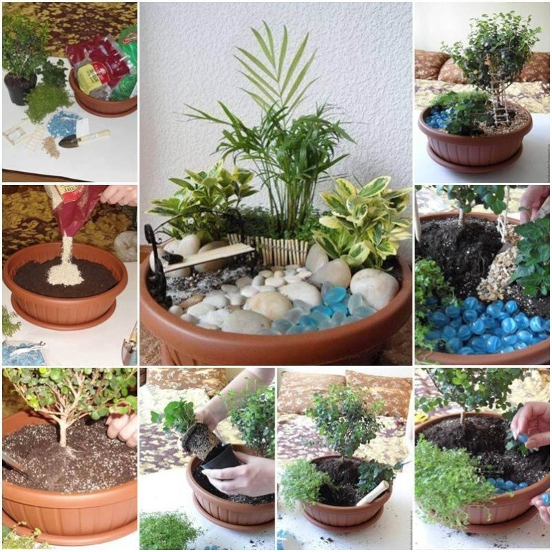 Astuces décos et rangements pour jardin ou plantess 11011410