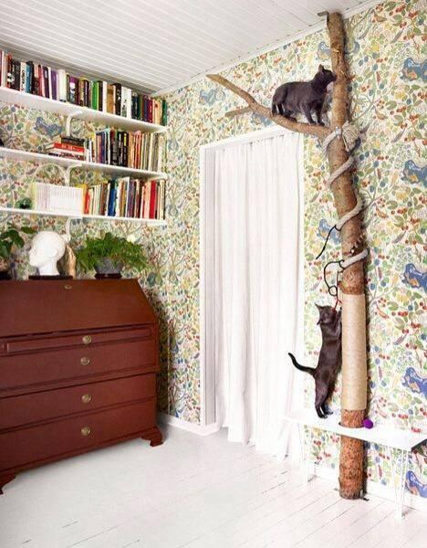 Idées et astuces pour Chiens et chats! 11889511