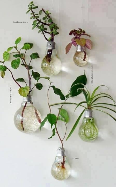 Astuces décos et rangements pour jardin ou plantess 17955410