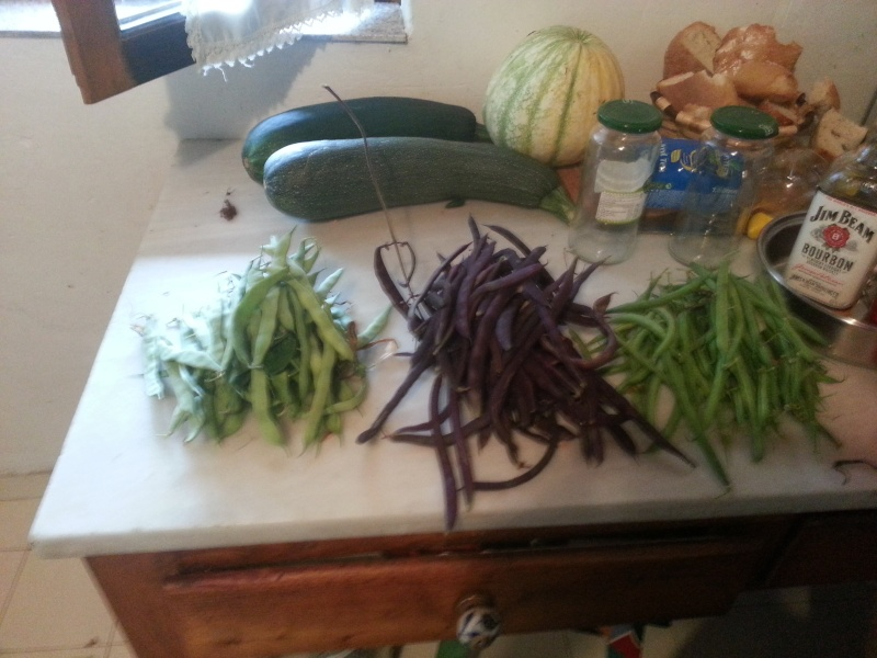haricot vert - Page 8 20150716