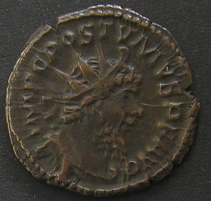 Collection profus Dscn1934