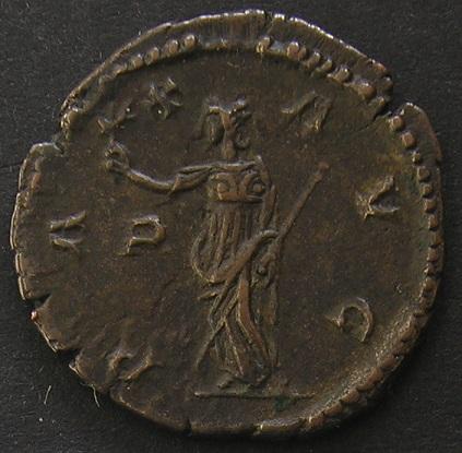 Collection profus Dscn1935