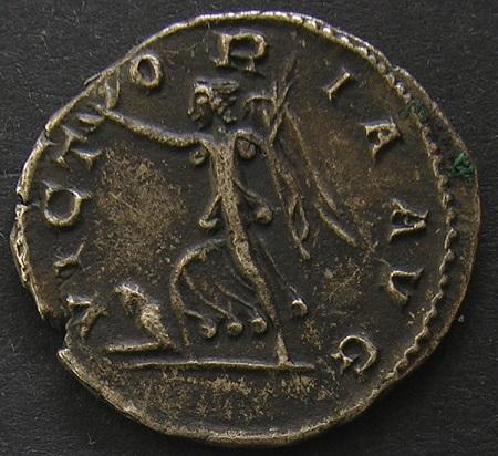 Collection profus Dscn1939