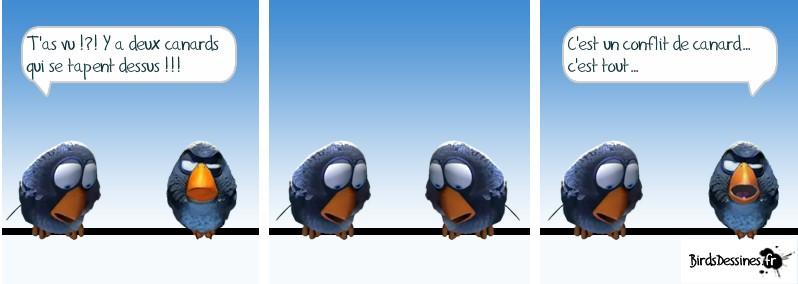 Encore quelques Birds ? Bird710