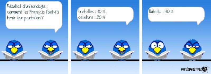 Encore quelques Birds ? Bird810