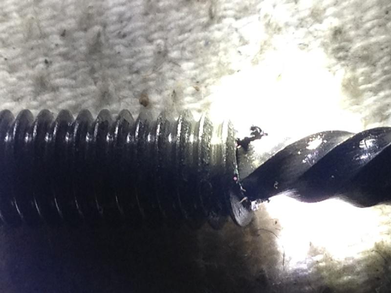 extraction vis queue de cochon Img_2520