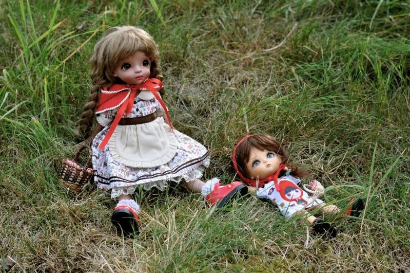 mes petits chaperons rouges! nouvelles photos page 7 - Page 4 Dsc_0120
