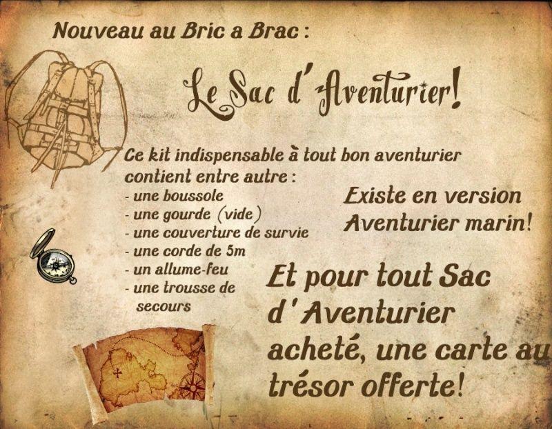Le panneau d'affichage Sac_av10