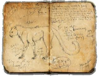 Morgruff's Study (Story type thing)  Acinon10