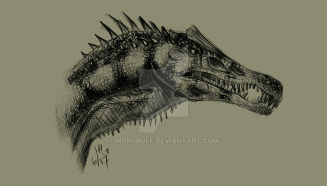 Nitara's Dragons  Spinos10