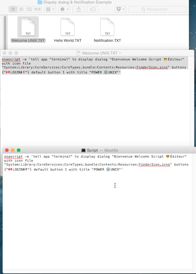 UNIX Script Éditeur.app 410