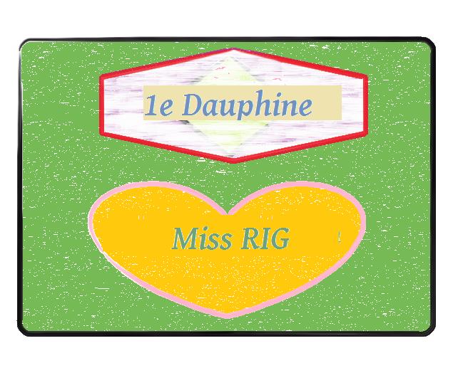 Miss Gécée- Concours de beauté internationale - Page 6 Miss_n15