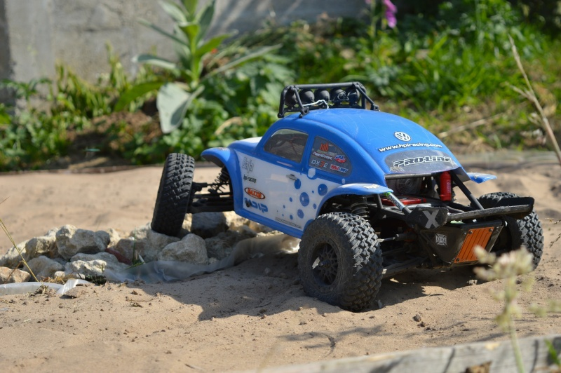 My Axial EXO Terra Buggy - Page 5 Dsc_0311