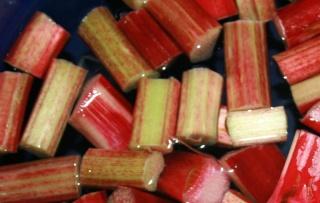 Connaissez-vous  la rhubarbe ? Rhubar10