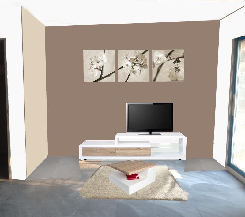 Peinture et meubles salon! Salon_14