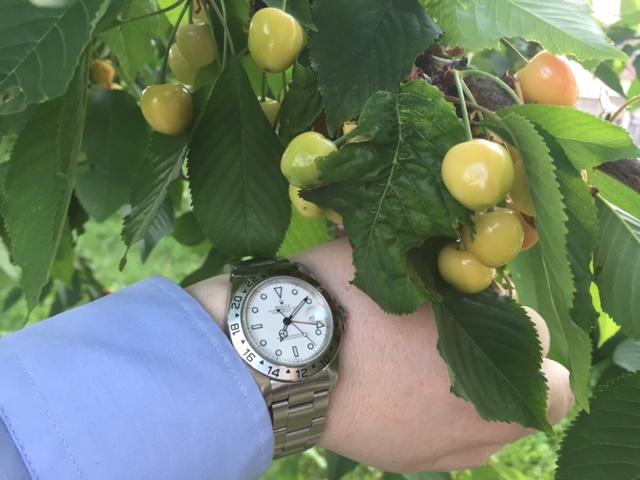 La montre du vendredi 12 juin 2015 Img_1918