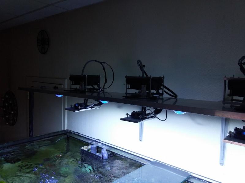 Rampe led 100w watercooling  20150716